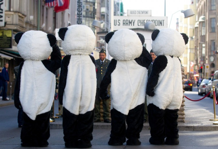 Activists of the WildAid animal rights group are dressed as panda bears as they demonstrate at Checkpoint Charlie in Berlin. WildAid aimed to call attention on the situation of panda bears that are threatened with extinction. (GettyImages)