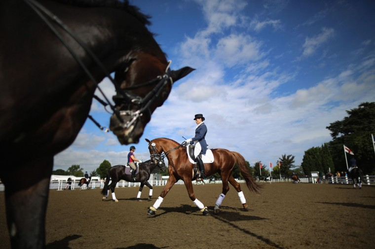 Competitors warm up their horses as they take part in The National Dressage Championships at Stoneleigh Park in Stoneleigh, England. The four day event attracts the country's top riders with 22 national titles to win. The event is considered the pinnacle competition of the year. Equestrian sports have seen a boost in interest after the great successes of 2012 Olympic and Paralympic riders. (Christopher Furlong/Getty Images)
