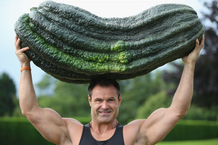 Weightlifter Jonathan Walker from Harrogate poses for the media as he lifts a marrow weighing 119lbs 12oz which won the Giant Marrow Class in the Harrogate Autumn Flower Show in Harrogate, England. The giant marrow was grown by Peter Glazebrook, from Newark, who won all six classes in the giant vegetable competition during the show at The Great Yorkshire Showground. (Christopher Furlong/Getty Images)