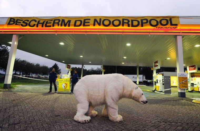 Greenpeace activists stand near a stuffed polar bear at a Shell gasoline station in the central Dutch town of Breukelen to protest against drilling in the Artic sea. The organization is blocking some 50 Shell gasoline stations in the Netherlands to protest against oil drilling off the coast of Alaska. According to the US Geological Survey, the Arctic is believed to hold 13 percent of the planet's undiscovered oil reserves and 30 percent of its undiscovered natural gas. (Marcel Antonisse/AFP/Getty Images)