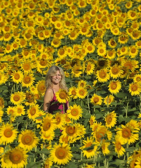 Julie Ruby of Abingdon,MD has her picture taken as she stands amongst the many flowers in the field located in Jarrettsville, MD. (Lloyd Fox/Baltimore Sun)