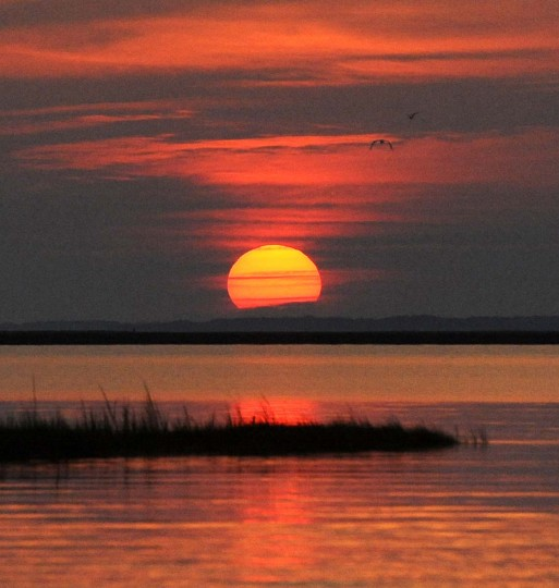 "A sunrise view from the deck of the ""Miss Anita,"" a crab boat which belongs to Smith Island fisherman Mark Kitching. It is a typical view for Mr. Kitching on his ""commute"" to the crab fishing grounds he frequents on the Chesapeake Bay. He leaves for work well before dawn and returns to his dock between one and two in the afternoon. (Barbara Haddock Taylor/Baltimore Sun)"