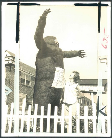 Edward Witles has built a 10-foot gorilla on his lawn to advertise that he will give away prizes to trick-or-treaters. Here, Mrs. Witles inspects the goodwill gorilla that took two days to build. Oct. 21, 1965. (William H. Mortimer/Baltimore Sun)