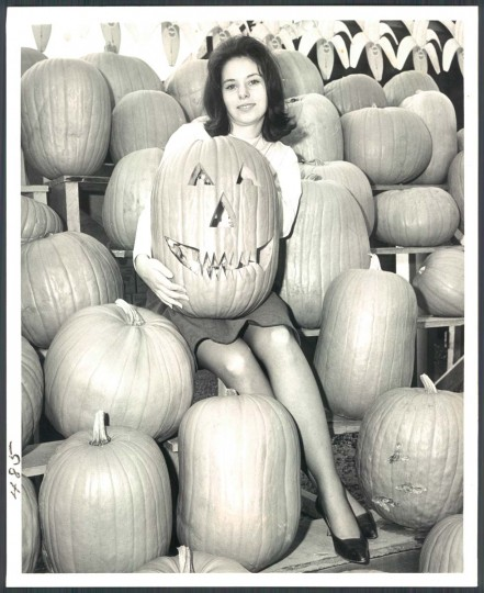 Leslie Blatt and her toothy friend are all ready for Halloween as they sit amid tiers of potential jack-o-lanterns. Oct. 30, 1964. (Baltimore Sun)