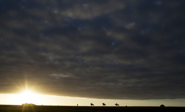 Early morning exercise on racecourse side gallops at Newmarket racecourse in Newmarket, England. (Alan Crowhurst/Getty Images)