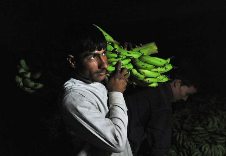 An Afghan day laborer unloads bananas from a truck at the vegetable market in Jalalabad. The official World Food Day theme, announced each spring by the Food and Agriculture Organization of the United Nations (FAO), gives focus to World Food Day observances and raises awareness and understanding of approaches to ending hunger. (Noorullah Shirzad/Getty Images)