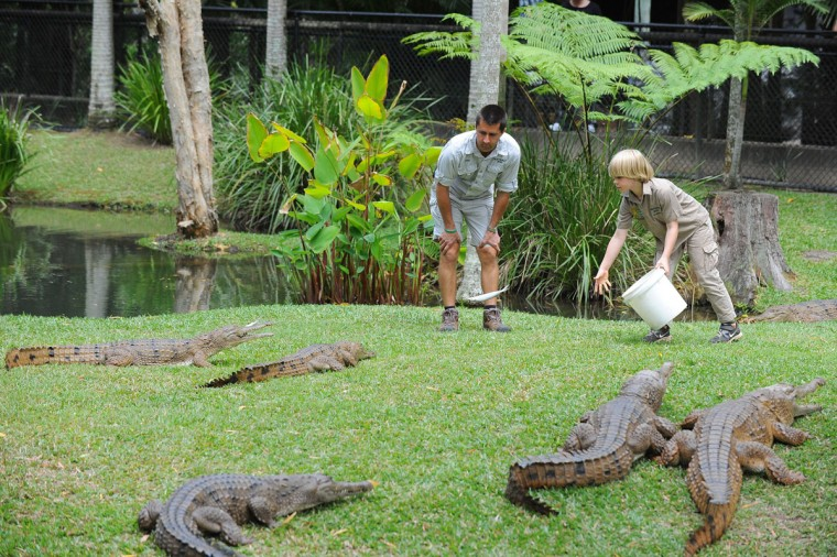 Robert Irwin (R) feeds freshwater crocodiles with Australia Zoo's Head of Reptiles, Josh Ruffell at Australia Zoo on the Sunshine Coast, Australia. Robert Irwin, 8, feed freshwater crocodiles for the first time publicly today. (Ben Beaden/Australia Zoo via Getty Images)