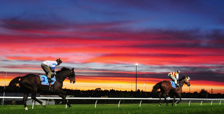 Jockey Corey Brown (L) riding Rangirandoo and Hugh Bowman riding Shoot Out during trackwork at Breakfast With The Best at Moonee Valley Racecourse in Melbourne, Australia. (Vince Caligiuri/Getty Images)