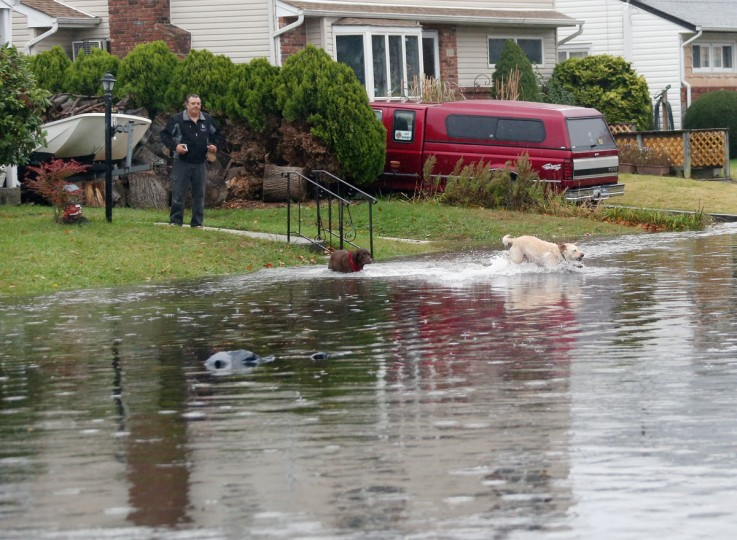 October 29, 2012 : Jerry Smith of South Long Beach Avenue watches his dogs take a dip in the flooded street in front of his home as high tide and winds from Hurricane Sandy combine to flood the area in Freeport, New York. (Bruce Bennett/Getty Images)
