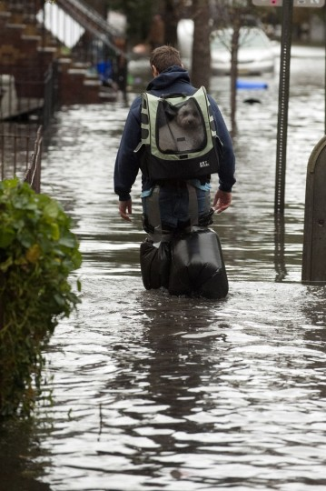 A man walks down a flooded street in Hoboken, N.J., with his dog on his back after Hurricane Sandy. (Michael Bocchieri/Getty Images)