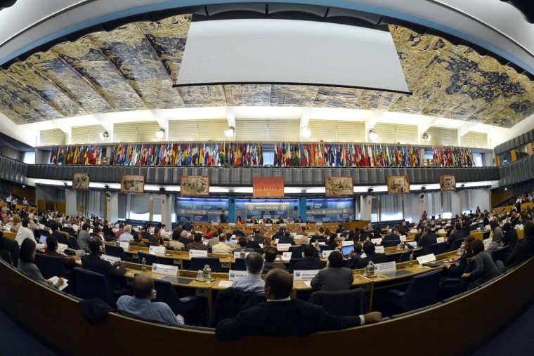 Delegates attend the Committee on World Food Security (CFS) on October 15, 2012 at the UN's Food and Agriculture Organisation (FAO) in Rome. (Andreas Solaro/AFP/Getty Images)