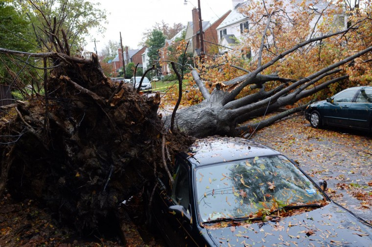 October 30, 2012: A downed power line, knocked over by a falling tree, is seen in the wake of Hurricane Sandy in Washignton, DC. (Mandel Ngan/AFP/Getty Images)