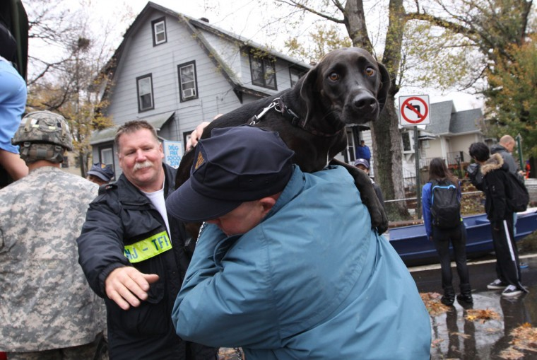 October 30, 2012: A resident and his dog are evacuated from a neighborhood in Little Ferry, New Jersey, one day after Hurricane Sandy slammed the East Coast. (Mehdi Taamallah/AFP/Getty Images)