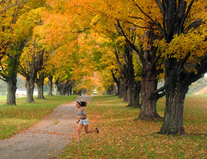 Heather Wirkus, 13, from Albertlea, Minnesota, runs under the changing maple trees at the Maryland Agriculture Center on Shawan Road in Hunt Valley. She was taking photos of the colorful rows of trees while visiting family in Timonium. (Karen Jackson/Baltimore Sun)