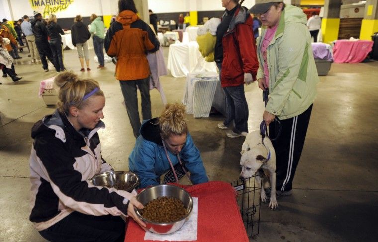 BARCS volunteers Becky Zawadny, Laura Boggs-True and Heather Rebnick try to coax a reluctant dog into a crate at the First Mariner Arena. The animals were evacuated by volunteers as Hurricane Sandy moves into the city. (Barbara Haddock Taylor/Baltimore Sun)