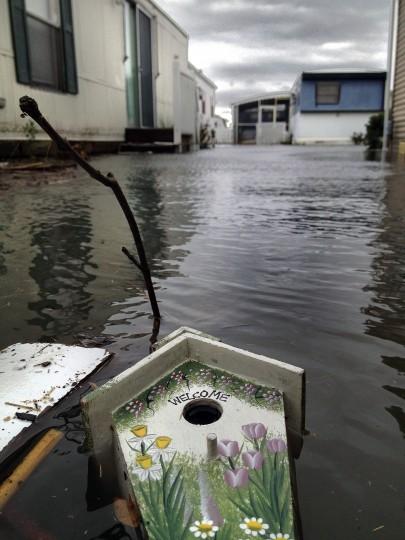 A bird house floats among debris at Warren's Park. (Karl Merton Ferron / Baltimore Sun)