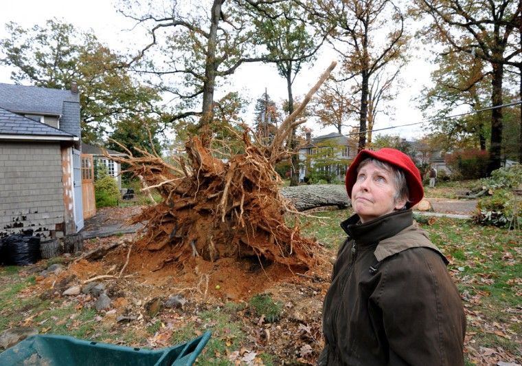 "An oak tree over a hundred years old on Maureen O'Donnell (pictured) and John Goebeler's property caused a telephone pole to snap and several wires to fall at the corner of Hilton Ave. and Ridge Rd. O'Donnell said,' You have no idea how thrilled we were that it didn't hit anybody, anybody's property or anybody's car."" She said they plan to take down all the large trees around their home because of the stress wondering if and which tree/s will fall. Commonwealth Edison, which, like BGE, is owned by Exelon Corporation, fixes the snapped telephone pole in the background. ComEd, which has merged with BGE, fixes a snapped telephone pole at the corner of Hilton Ave. and Ridge Rd. The work crew traveled from Northern Illinois to repair the damage from ""superstorm"" Sandy. (Algerina Perna/Baltimore Sun)"
