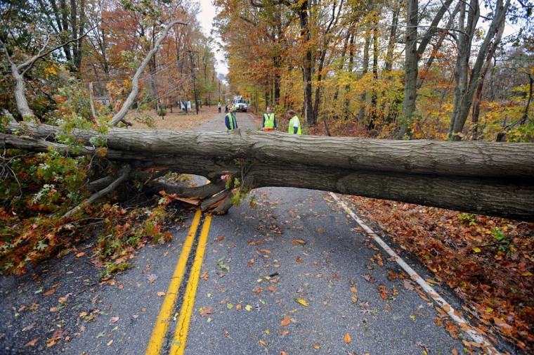 Harford County workers survey a large tree, uprooted by Hurricane Sandy, that brought down at least five utility poles when it fell across Wheel Road at Shirley Drive in Bel Air. (Kenneth K. Lam/Baltimore Sun)