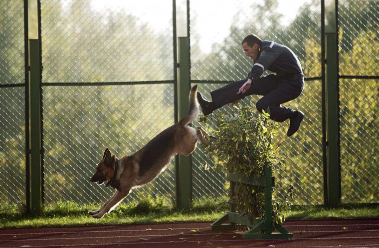 A Belarussian interior ministry officer jumps over an obstacle with his guard dog as they take part in a show of skills competition ahead of the ministry's 60th anniversary, at their base near the village of Gorany, some 32 km (20 miles) west of Minsk. (Vasily Fedosenko/Reuters photo)
