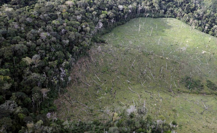 An aerial view shows illegal deforestation close to the Amazonia National Park in Itaituba, state of Para May 25, 2012. (Nacho Doce/Reuters)