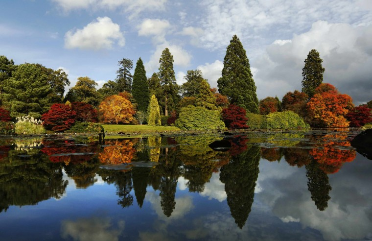 Changing autumn leaves are reflected in a pond in Sheffield Park Gardens near Haywards Heath in southern England. (Luke MacGregor/Reuters)