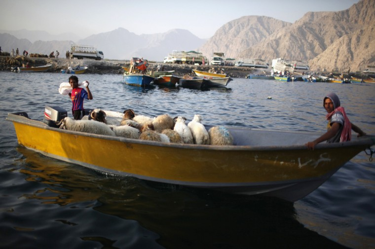 Iranian smugglers drive a boat loaded with sheep at the Omani port of Khasab. Until recently the Iranian boats and their fearless young skippers escorted several cargoes a day across the narrow Strait of Hormuz - loaded with everything from soft drinks to mobile phones and cosmetics - bought in the flourishing trading centers of the United Arab Emirates and sold to merchants in Iran. The proximity of Iran to the UAE and Oman and their historic trade and finance links have supported thriving trade, which in recent years has undermined the impact of economic sanctions imposed by the United States and its allies on Tehran - until now. (Ahmed Jadallah/Reuters)