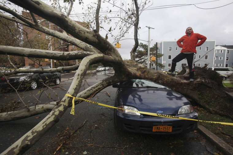 An unidentified pedestrian strikes a pose as fallen trees lie across parked cars in the borough Queens, New York October 30, 2012. (Gil Cohen Magen/Reuters)