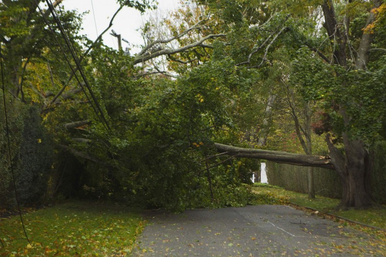 October 29, 2012: A fallen tree blocks a road after being blown over by winds from Hurricane Sandy in Southampton, New York. (Lucas Jackson/Reuters)
