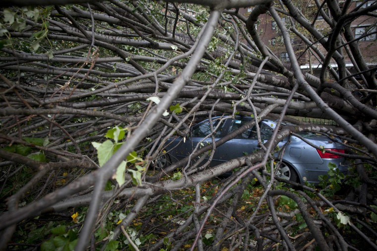 October 30, 2012: A car is crushed under a fallen tree in the Lower East Side in the aftermath of Hurricane Sandy in New York. (Andrew Kelly/Reuters)