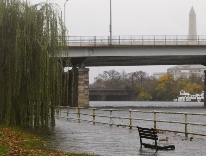 October 29, 2012: Ducks swim in waters that have overlapped a sea wall on the Potomac River in Washington. (Gary Cameron/Reuters)