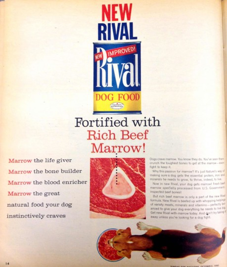 Rival Dog Food. Sunday Sun Magazine. October 2, 1960. (Courtesy: The Baltimore Sun)