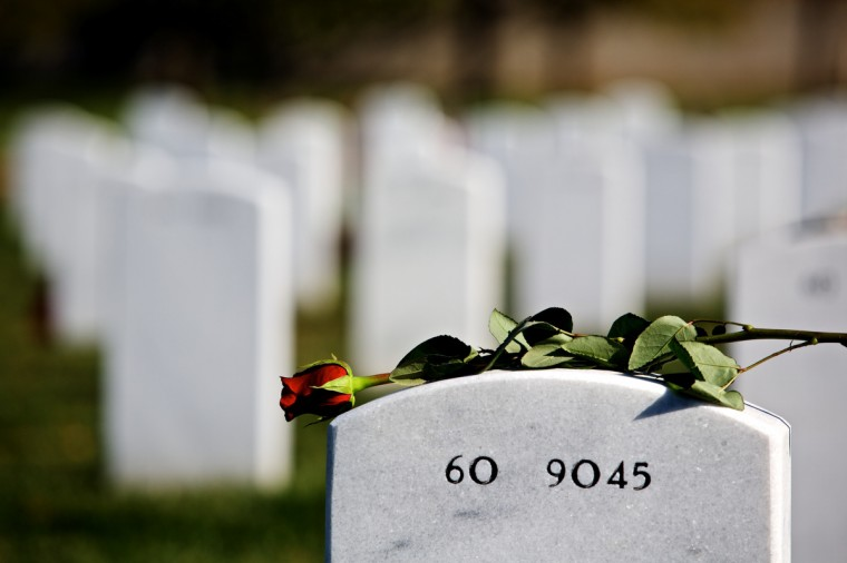 A single rose lays on the headstone of a fallen serviceman on Veteran's Day at Arlington National Cemetery on November 11, 2012 in Arlington, Virginia. (Lexey Swall/Getty Images)