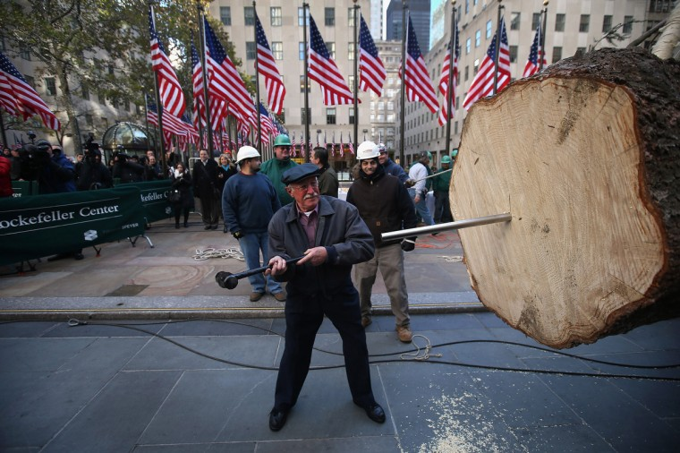 Joe Balku, who donated the tree, drives a stake into the Rockefeller Center Christmas tree before workers stood it up on in New York City. The tree, an 80-year old Norway Spruce, was donated Balku of Flanders, New Jersey. It weighs approximately 10 tons, measures 80 feet tall and is 50 feet in diameter. The official tree-lighting ceremony will be Wednesday, November 28. (John Moore/Getty Images)