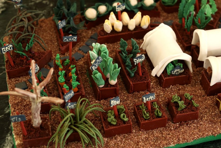 The White House kitchen garden, part of the nearly 300-pound White House gingerbread house, is on display at the State Dining Room during a preview of the 2012 White House holiday decorations. (Alex Wong/Getty Images)