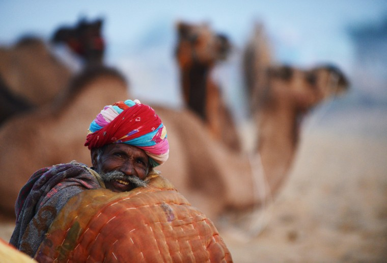 A camel trader keeps warm with a blanket at dawn as he sits near a flock of camels at the fair grounds in the outskirts of Pushkar. The annual five-day camel and livestock fair, held in the town of Pushkar in the state of Rajasthan is one of the world's largest camel fairs, and apart from buying and selling of livestock it has become an important tourist attraction. (Roberto Schmidt/Getty Images)
