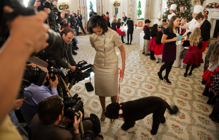 First Lady Michelle Obama (C) takes the presidential dog Bo over to the press during the first viewing of the White House 2012 holiday decorations in Washington, DC. (Jim Watson/Getty Images)