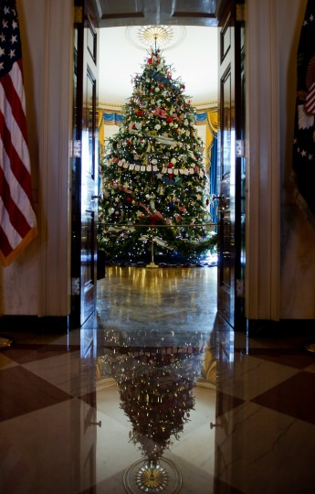 The official Christmas tree stands in the Blue Room during the first viewing of the White House 2012 holiday decorations in Washington, DC. (Jim Watson/Getty Images)