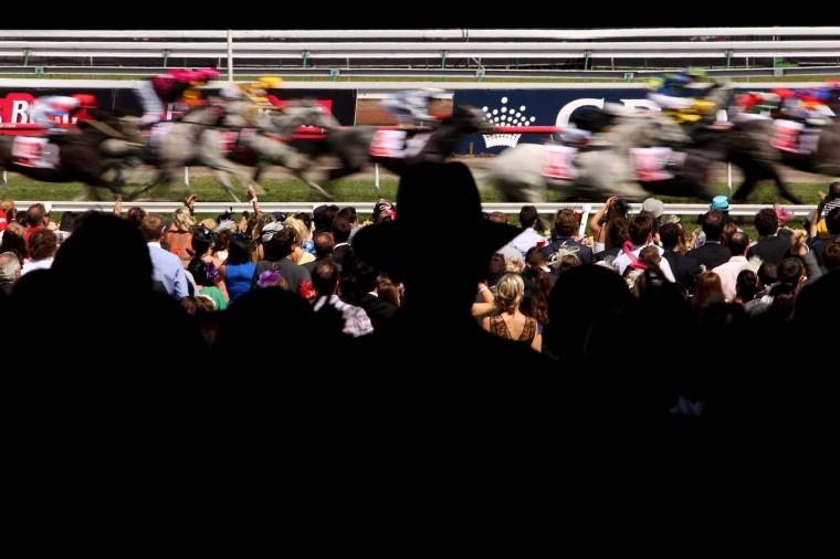 Racegoers watch the races on Crown Oaks Day at Flemington Racecourse on November 8, 2012 in Melbourne, Australia. ( Robert Prezioso/Getty Images)