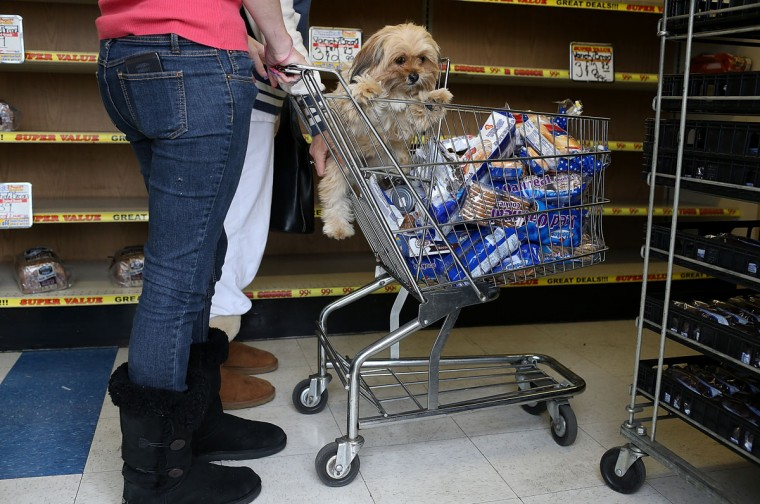 A dog sits in a shopping cart that is filled with packages of Hostess products at a Wonder Hostess Bakery Outlet in San Leandro, Calif. Hostess Brands, the maker of Twinkies, Ding Dongs and Wonder Bread, announced plans to liquidate its assets. The news prompted some shoppers to stock up on the company's products. (Justin Sullivan/Getty Images)