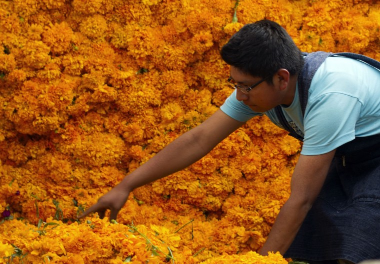 A man sells flowers at the Jamaica market in Mexico City, on October 31, 2012, as Mexicans prepare to celebrate the traditional Day of the Dead. (Pedro Pardo/AFP/Getty Images)