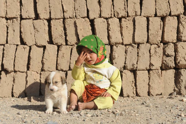 An Afghan child sits next to a puppy at a brick factory in the outskirts of Herat on November 5, 2012. Over a third of Afghans are living in abject poverty, as those in power are more concerned about addressing their vested interests rather than the basic needs of the population, a UN report said. (Aref Karimi/AFP/Getty Images)