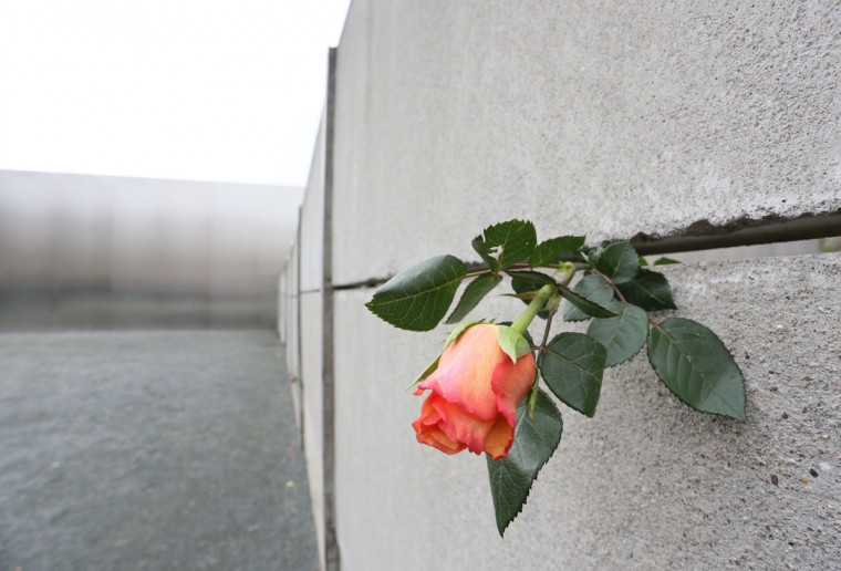 A rose has been placed in a gap of the 'Hinterlandmauer' at the memorial site of Berlin Wall at Bernauer Strasse in Berlin during a commemoration marking the 23rd anniversary of the Berlin Wall's fall. (Stephanie Pilick/AFP/Getty Images)
