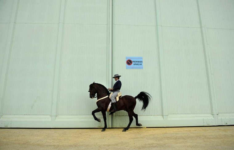 A rider mounts his horse at the Sicab International Horse Show of Spain, on November 25, 2012 in Sevilla. (Cristina Quicler/AFP/Getty Images)