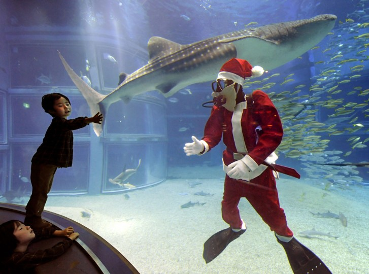 A diver clad in a Santa Claus costume welcomes visitors to an aquarium at Kaiyukan in Osaka on November 19, 2009. (Kazuhiro Nogi/AFP/Getty Images)