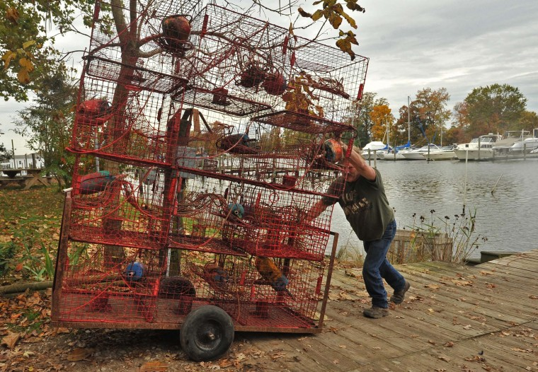 Waterman Harry Foote III hauls away a tower of cleaned crab pots for storage over the winter. He decided to pull hundreds of his crab pots out of the water before Hurricane Sandy arrived so that they wouldn't be damaged by debris churned up by the storm. This area was hard-hit during Hurricane Isabel. (Amy Davis/Baltimore Sun)