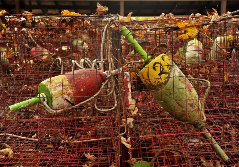 Old crab pots and floats belonging to retired waterman Harry Foote Jr., festooned with autumn leaves, are stored outside until the next crabbing season. (Amy Davis/Baltimore Sun)