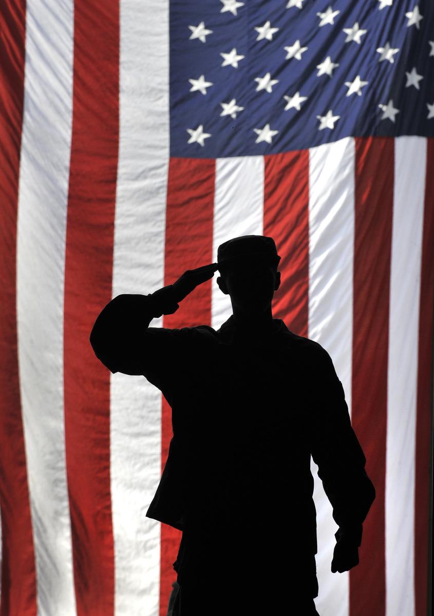 Veteran Salute Veterans Day ceremonie...
