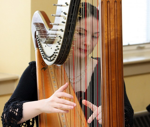 "The winner of this week's Reader SunShots series ""Musical Moments"" is Ruth Schaefer for her picture of harpist Mary Margaret Jones at a ""high tea"" fundraiser. The picture was shot with a Canon Rebel XSi with a zoom lens. Here is a critique by Baltimore Sun director of photography Robert Hamilton. ""What I like about this picture is the photographer used the harp to frame the face of the subject while keeping the focal point on her hands. However, I think the picture could have been even stronger if it had been cropped from the right to minimized the window in the background."""