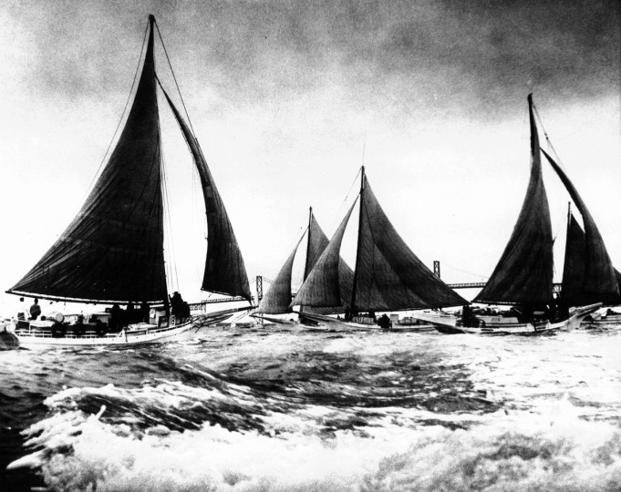 With sails filled and the bay waters foaming about them, Maryland's skipjack fleet races off Sandy Point State Park before the start of the oyster season in 1970. (Clarence B. Garrett/Baltimore Sun)