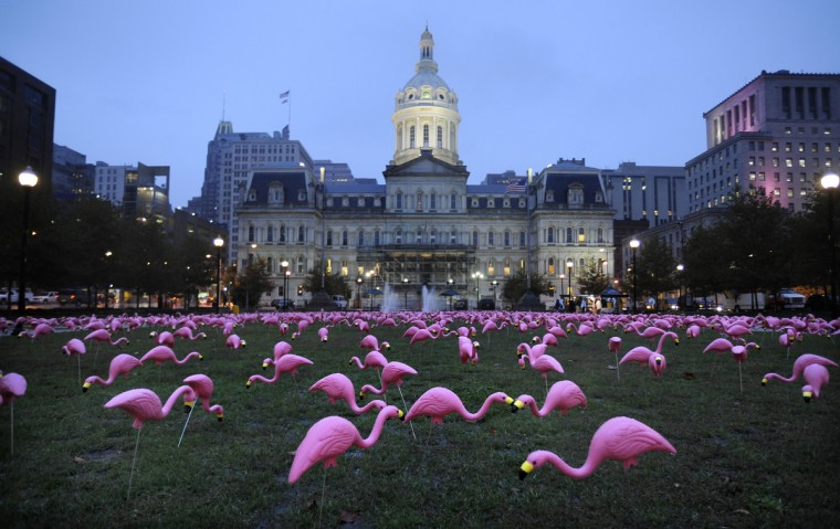 "Supporters put hundreds of plastic flamingos outside City Hall in 2009 amid a permit dispute over a large flamingo sign at a Hampden restaurant. Many would later castigate Cafe Hon's owner for trademarking ""hon,"" a local term of endearment. (Jed Kirschbaum/Baltimore Sun)"